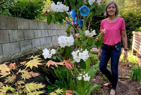 LIDENSKAP FOR HAGE: Den utflyttede flekkefjæringen Inger Skarpenes er over gjennomsnittet interessert i blomster og planter, og har en stor og overdådig hage i Arendal.