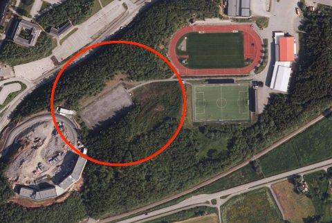 GIGANTHALL: Idrettsklubbene ønsker seg en flerbrukshall på 9000 kvadratmeter.