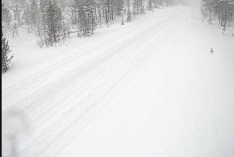 Snødekke: Slik så det ut på riksvei 77 over Graddis lørdag morgen. Veien er stengt på svensk side.