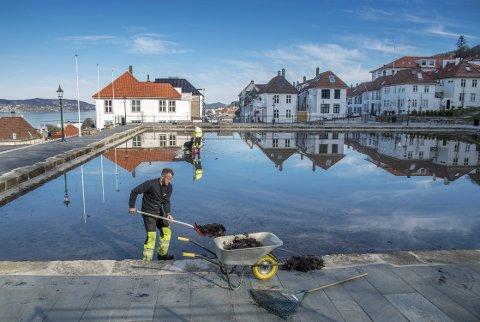 Blikk stille mens vannspeilet blir lavere og lavere. Bildet er tatt i det bassenget tømmes sakte, men allerede er det hentet opp mye løv fra vannet. (Foto: EIRIK HAGESÆTER)
