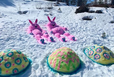 De rosa påskeharene vekker latter og glede i løypene på Mjøfjell.