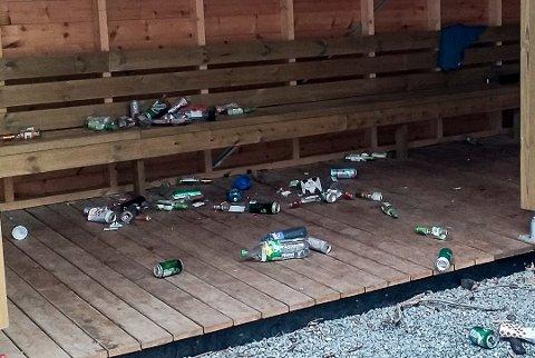 BEKYMRET: Kommuneoverlege Beate Smetbak er bekymret for det manglende smittevernet som oppstår på fest. Foto: Privat