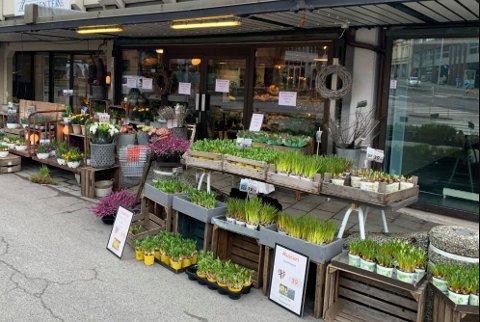 Flere blomsterbutikker tilbød plukk selv-shopping frem til tidligere denne uken da det ble klart at heller ikke dette tillates. Men i Indre Østfold er det lov.