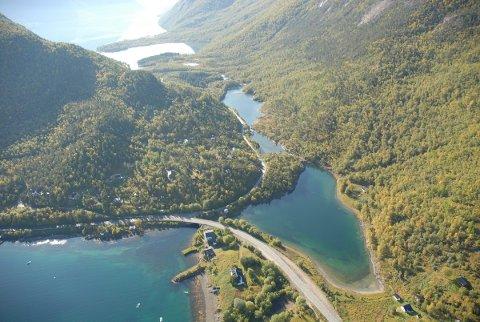 MISFORSTÅELSE: Slik beskriver Tore Vatne, seksjonsleder for miljøvernavdelinga ved Fylkesmannen i Nordland, hendelsen da det ble fisket etter pukkellaks i Råna.