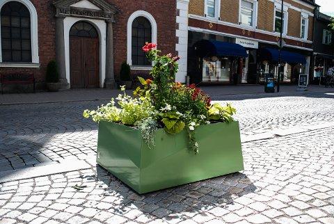 GRØNN GLEDE: Kassene i Storgata var sist sommer frodige innslag i bybildet. Nå ønsker kommunen seg mer grønn glede.