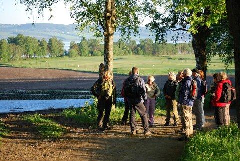FIN VANDRETUR: En vandretur på Ottestadstien kan være en flott opplevelse.