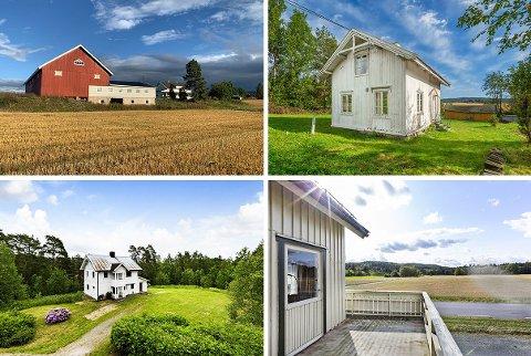Bildene viser eiendommer fra Fosser, Setskog, Lierfoss og Hemnes som skal selges, og som alle er presentert med «landlige omgivelser».