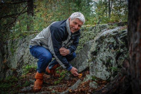 """SOPP: Øyvind Stranna-Larsen viser fram sitt """"hemmelige"""" kantarellsted, men andre sopper har han ikke like god greie på. Nå kan han og andre få svar på soppkontrollen til helga."""