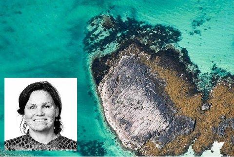 Lofotrådet skal ansette egen klimarådgiver i en 3-årig stilling. - Det er viktig å finne rett person til et sånt prosjekt, sier sekratariatsleder Hanne Ulrichsen (innfelt).