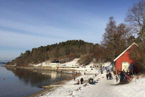 FOTOKONKURRANSE: Erna Solberg ønsker forslag til julekortmotiv fra Oslo. Dette bildet er tatt i Hvervenbukta en vakker vinterdag. Arkivfoto: Nina Schyberg Olsen