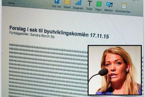 Slik så forslaget til Sandra Borch (innfelt) ut etter at hun hadde sovnet av. Fotomanipulasjon: Skjermdump Facebook/Alf Vidar Snæland / NTB scanpix.