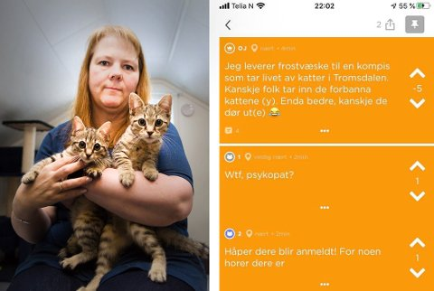 UAKSEPTABELT: Nestleder i Dyrebeskyttelsen Norge Tromsø, Hege Gausdal Foshaug, sier at katteeiere går rundt og er redde for dyrene når det kommer slike trusler.