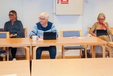 UENIGE NABOER: Eier og gjestehavnvert Inger Kristine Grønvold (til venstre) var med i utvalget for å høre hva de hadde å si. Målfrid Vogt (til høyre) er en av klagerne. Hun er medlem av utvalget, og måtte tre til side.