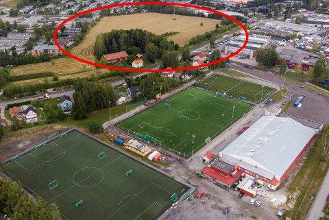 Flyttes? Mulighetsstudie for framtidige idrettsanlegg mener jordet på motsatt side av Trondheimsveien bør omreguleres til idrettsformål. Da vil dagens stadionområde bli frigjort til andre formål. Foto: Vidar Sandnes