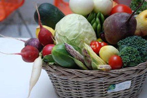 Foreleserne tar for seg økologisk grønnsaksproduksjon på seminaret på fredag.