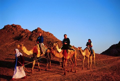EGYPT ER TILBAKE: Fra 21. desember settes det opp charterruter til Sharm el-Sheikh. I området rundt kan man for eksempel bli med på ørkentur og beduinbesøk, ri på kameler og kjøre firehjulinger i sanden, beskriver turoperatøren.