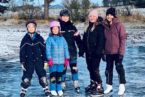 Alexander Rege, Lillian Tønnesen, Heine Stigen Lind-Hannssen, Karinja Hovland, og Ella Artis går i samme klasse og nyter isen som har lagt seg på Linda Krohn Reke sin eiendom.