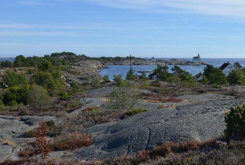 Det ubebygde arealet i Lyngør har i dag status som friluftsområde, og politikerne må tillate en omregulering til bolig/fritidsbolig for at utbyggingsplanene skal la seg realisere.