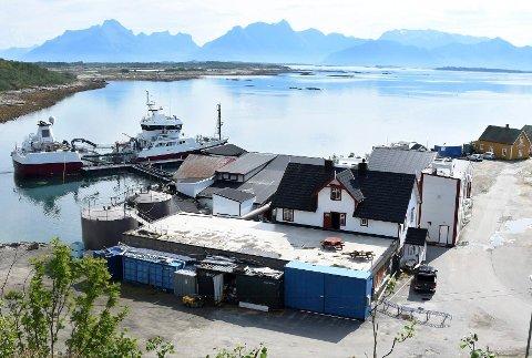 I havna: Det er ønskelig å få etablert en tømmestasjon i havneområdet på Skutvik.