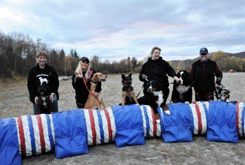 Damer og hunder har dannet en egen kohort som gjorde at de kunne treffes og trene under koronanedstengningen.