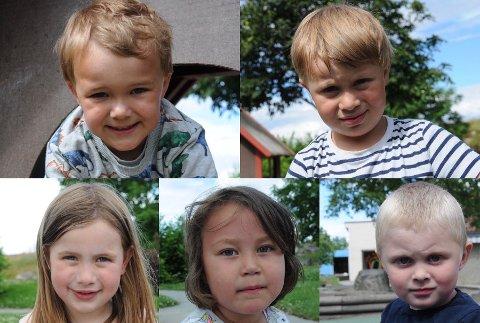 Audun (oppe til venstre), Noah, Leonora, Lycke og Markus hadde noen tanker om hva de vil jobbe med når de blir voksne.