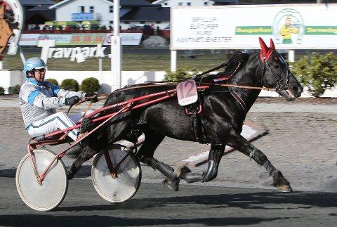 INGEN PALLPLASS: Jan Martin Bjerring hadde med seg to gode hester, men det ble «bare» en fjerdeplass med Moe Svarten.