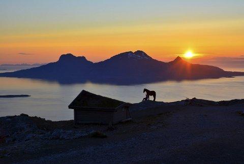 Vinnerbildet: Eirik Johannessen vant Bygdepostens sommerfotokonkurranse med dette bildet tatt på keiservarden i Bodø for å se den første midnattsola siste dag i mai.