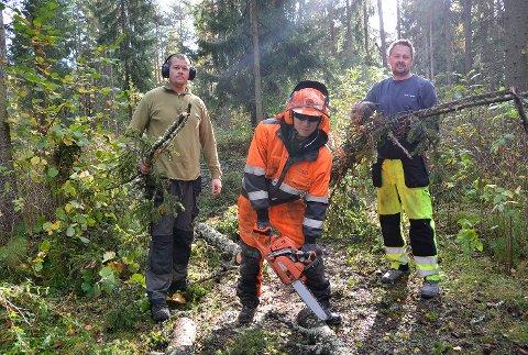 Rydder: Torkil Ørstad (f.v.), Jon Einar Bjerkerug og Snorre Sønju fra parkvesenet i Modum, er her i full sving med å rydde opp etter uværets herjinger i Øya i Vikersund.