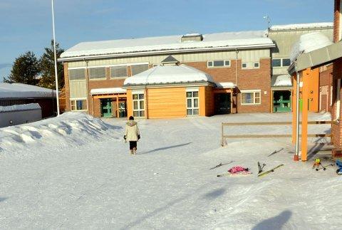 FORSVINNER? Enger skole i Åmot kan forsvinne i framtiden – til fordel for en ny og større skole et annet sted i Åmot.