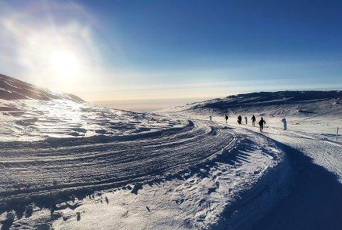 HØGEVARDE: Den savnede mannen skal ha gått seg bort i området øst for Høgevarde