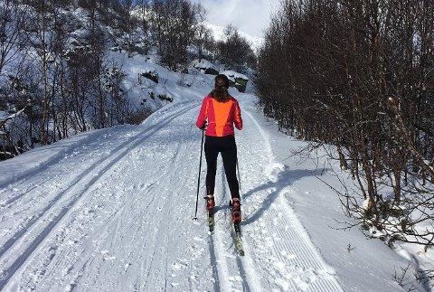 LØYPE: Det er fleire stader å gå på ski no i helga. Sånn såg det ut ved løypa i Stavtjørn i fjor.