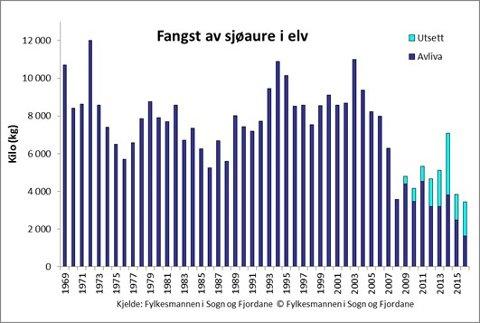 NEDGANG: Slik er utviklinga i fangsten av sjøaure i vassdrag i Sogn og Fjordane i totalvekt (kg). Frå 2009 er utattsett fisk inkludert i statistikken. Tabell: Fylkesmannen.