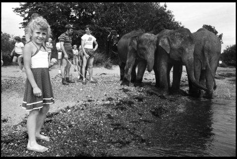 OPPLEVELSE: - Det var en magisk dag jeg ennå ikke har glemt, forteller Bianca Simonsen. Hun fikk som åtteåring oppleve elefantbadingen på nært hold. – Jeg drømte om å jobbe på sirkus i årevis etterpå.