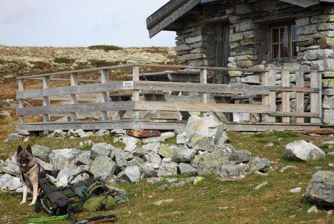 Denne steinbua i Vulufjell hadde fått platting med rekkverk.