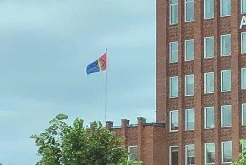 FLAGG: Det samiske flagget er satt sammen av fargene rødt, gult, blått og grønt. Sirkelen er et symbol for månen og sola. Pride-flagget er satt sammen av regnbuens farger.