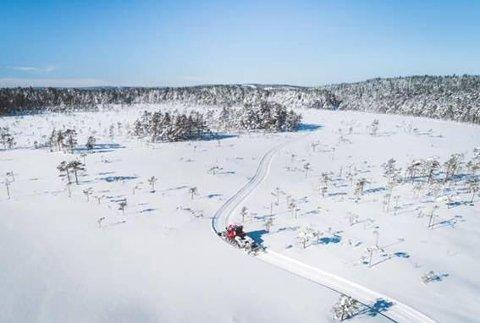 Slik så det ut på Sakkusmosen på Mangen i mars 2019. – Dette drømmer vi om, sier leder Carl Fredrik Havnås i Mangenfjellet Turlag.