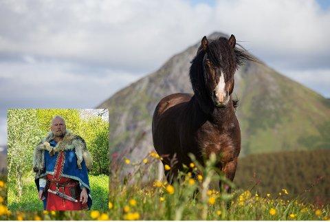 11. mai døde nordlandshingsten Mjølner etter et langt og innholdsrikt liv. Vikinghøvding Terje Bøe (innfelt) sier det var en tung avgjørelse å sende hesten ut på sin siste reis.