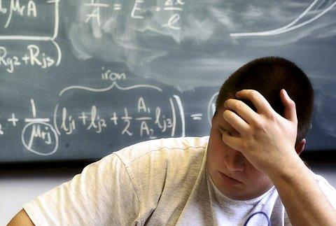Uenig: Skolepress og lekser vies oppmerksomhet for tiden. Førsteamanuensis Kjersti Lien Holte jobber for at leksebevisstheten skal skjerpes.