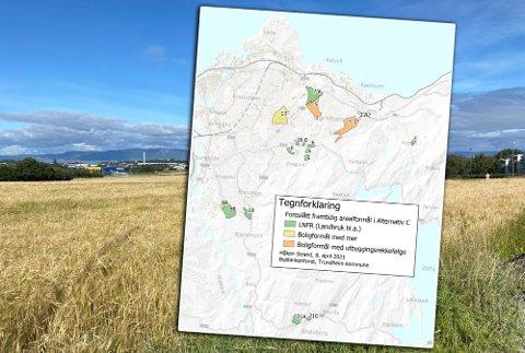 NY PLAN: Disse åkrene på Rotvoll ble først foreslått å forbli landsbruksareal. Kommunedirektøren mener nå at det på sikt kan komme boliger her.
