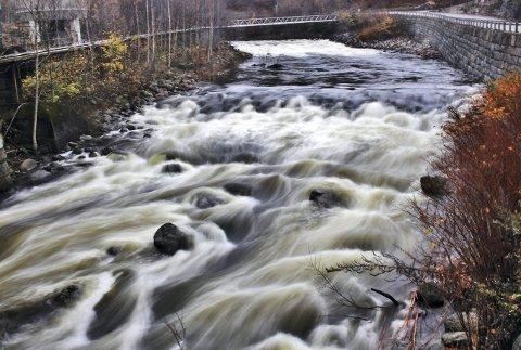 Her kan det bli liv: Hvis Vestfold fylkeskommune får det som den vil, kommer vannstanden i Farriselva til å økes innen 2021.   ArkivFoto: Svein Holone