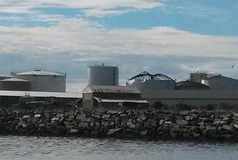 Eksplosjonen fant sted på øya Naustholmen på Lovund, hvor industrien er samlet. De nærmeste nabobedriftene er Nordland Rensefisk, Atlantic Styro og Byggmakker Lurøy avdeling Lovund.