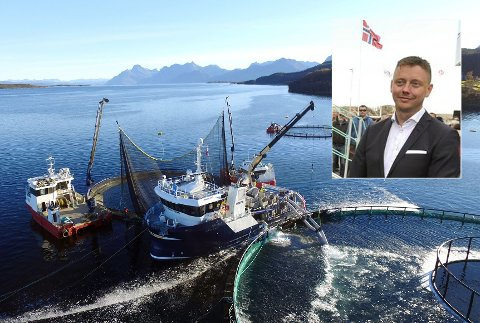 SKAL I RETTEN: Marine Supplys båt Polar Viking ute på oppdrag. Innfelt sjef Erik Mathisen. Han tar nå en tidligere ansatt og flere andre personer til retten.