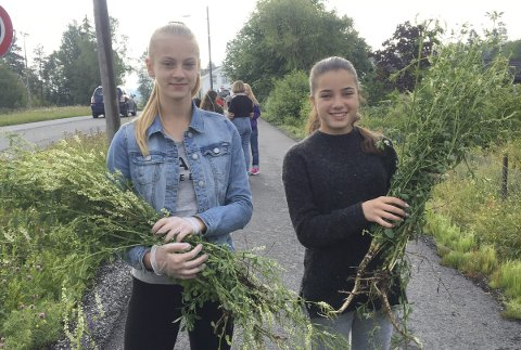 TIDLIGERE LUKEPAR: Martyna Bogaczewicz og Anniken Sebulonsen tok tak og røsket opp burot under aksjonen på Spikkestad i 2018.
