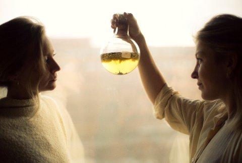Brygg: Vanessa Krogh og Cornelia Øiestad lager drikke med smaker fra naturen, og bruker ingredienser blant annet fra Inderøy.