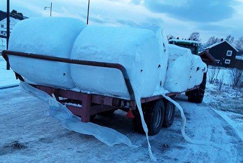 ANMELDT: Føreren av denne ekvipasjen blir anmeldt både fordi tilhengeren manglet lys og for dårlig sikring av last fordi rundballene ligger på snø.