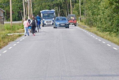 Myke trafikanter langs fylkesvei 28 i Os kommune.
