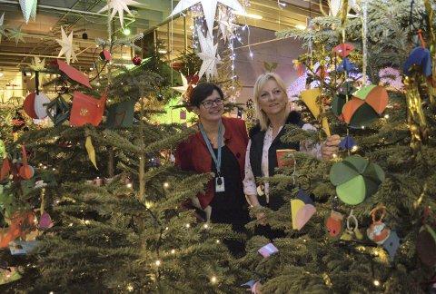 Anne Tove Koldal hos Vilvite (t.v.) og Kjersti Drangevåg fra BKK har i mange år samarbeidet om flere prosjekt. – Dette er fjerde juletreskogen vi steller i stand. (Foto: TOMR. HJERTHOLM)