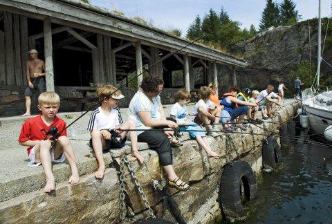 Askøy JFF har arrangert både kurs og konkurranser for barn før. Her fra en konkurranse i Kollevågen sommeren for ti år siden.   (Foto: EIRIK HAGESÆTER)