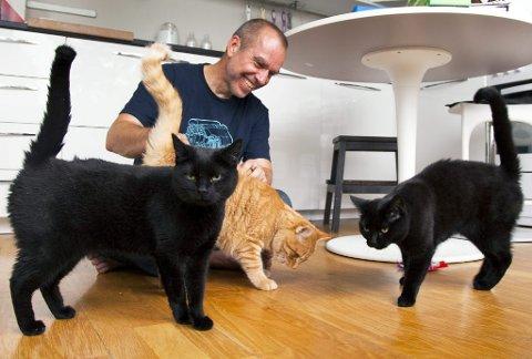 KOMMER HJEM: Kattevakt tilbyr å komme hjem til deg for å passe katten din mens du er på ferie.