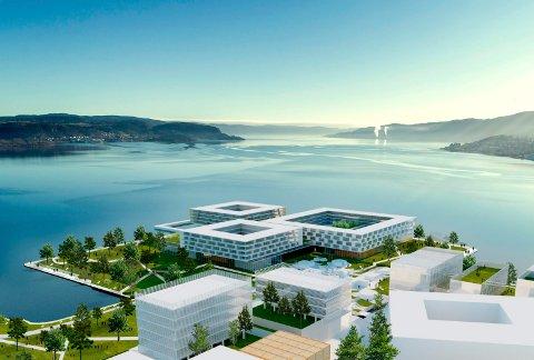 SKISSE: Slik er et av forslagene for hvordan Drammen Helsepark kan se ut, liggende ut mot Drammensfjorden. Dette er en del av tomten som kan bygges ut.